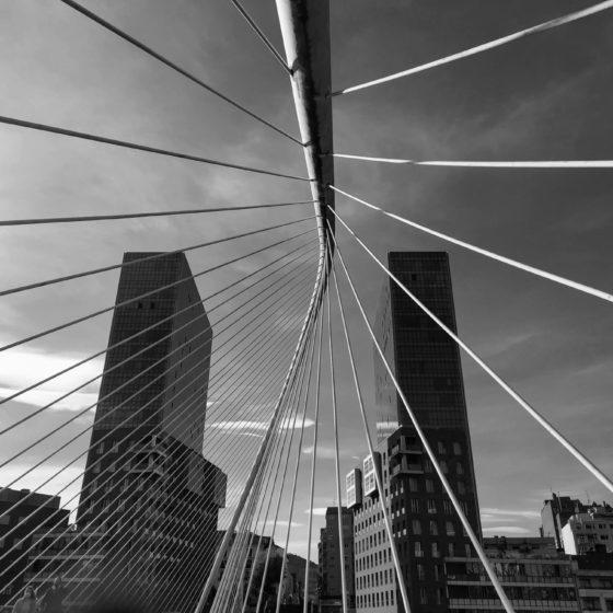 40 - Columna vertebral de Bilbao