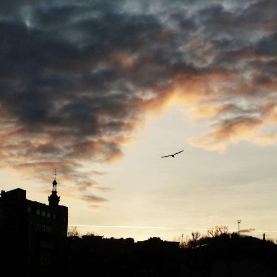 54 - Desde mi balcón observo la libertad de un nuevo día
